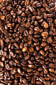 Roasted Coffee Bean background or texture concept. — Stock Photo
