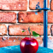 Big Ripe Red Apple  — Stock Photo