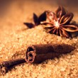 Cinnamon sticks and star anise on brown sugar macro — Stock Photo