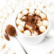 Cup of hot cocoa with chocolate and marchmallows — Stock Photo