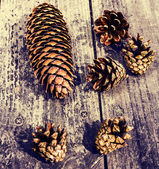 Pile of brown pine cones on wooden table — Stock Photo