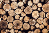 Firewood Background stacked in the woodpile — Stock Photo