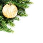 Christmas Fir Tree Border — Stock Photo