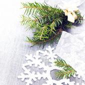 ветвь рождественской елки — Стоковое фото