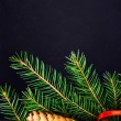 Christmas Fir Tree Branch — Stock Photo