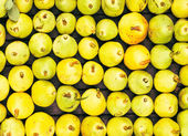 Freshly picked yellow pears at a famers market closeup — Stock Photo