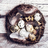 Easter basket with Easter Eggs — Stock Photo