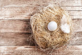 Easter nest with White Egg — Stock Photo