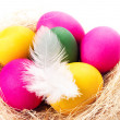 Colorful Easter Eggs on white background in a nest close up. — Stock Photo #40073285