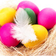 Colorful Easter Eggs on white background in a nest close up. — Stock Photo #40073407
