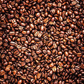 Roasted Coffee Beans background texture — Stock Photo