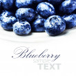 Fresh Blueberries isolated — Stock Photo #41448229