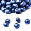 Fresh Blueberries isolated on white background — Stock Photo #41448283