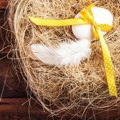Påsk boet med ägg, gula band och vit fjäder — Stockfoto