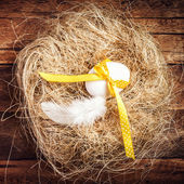 Easter nest with Egg, yellow ribbon — ストック写真