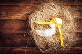 Easter nest with Egg, yellow ribbon and white feather — 图库照片