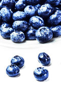 Blueberries on white plate isolated on white background — Stock Photo