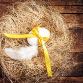 Easter nest with Egg, yellow ribbon — Foto de Stock