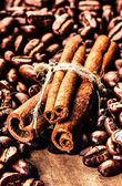 Roasted Coffee beans and cinnamon sticks — Stock Photo