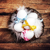 Easter nest with Egg, yellow ribbon — Stok fotoğraf