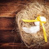 Easter nest with Egg, yellow ribbon — Zdjęcie stockowe