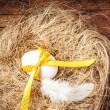 Stock Photo: Easter nest with Egg