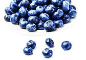 Fresh Blueberries in a  white bowl — Stock Photo