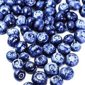 Blueberries — Photo