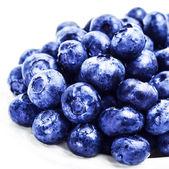 Fresh blueberries in a  white bowl — Stock Photo