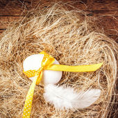 Easter nest with Egg — Stock Photo