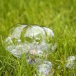 Soap bubble on the grass — Stock Photo