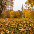 Church through the tree leaves — Stock Photo