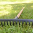 Rake lying on grass — Stock Photo