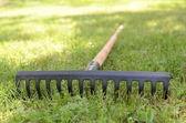 Rake lying on grass — Stock Photo