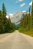 Canadian Road — Stock Photo