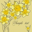 Floral spring background with the daffodils Beautiful vintage card — Stock Vector #26708157