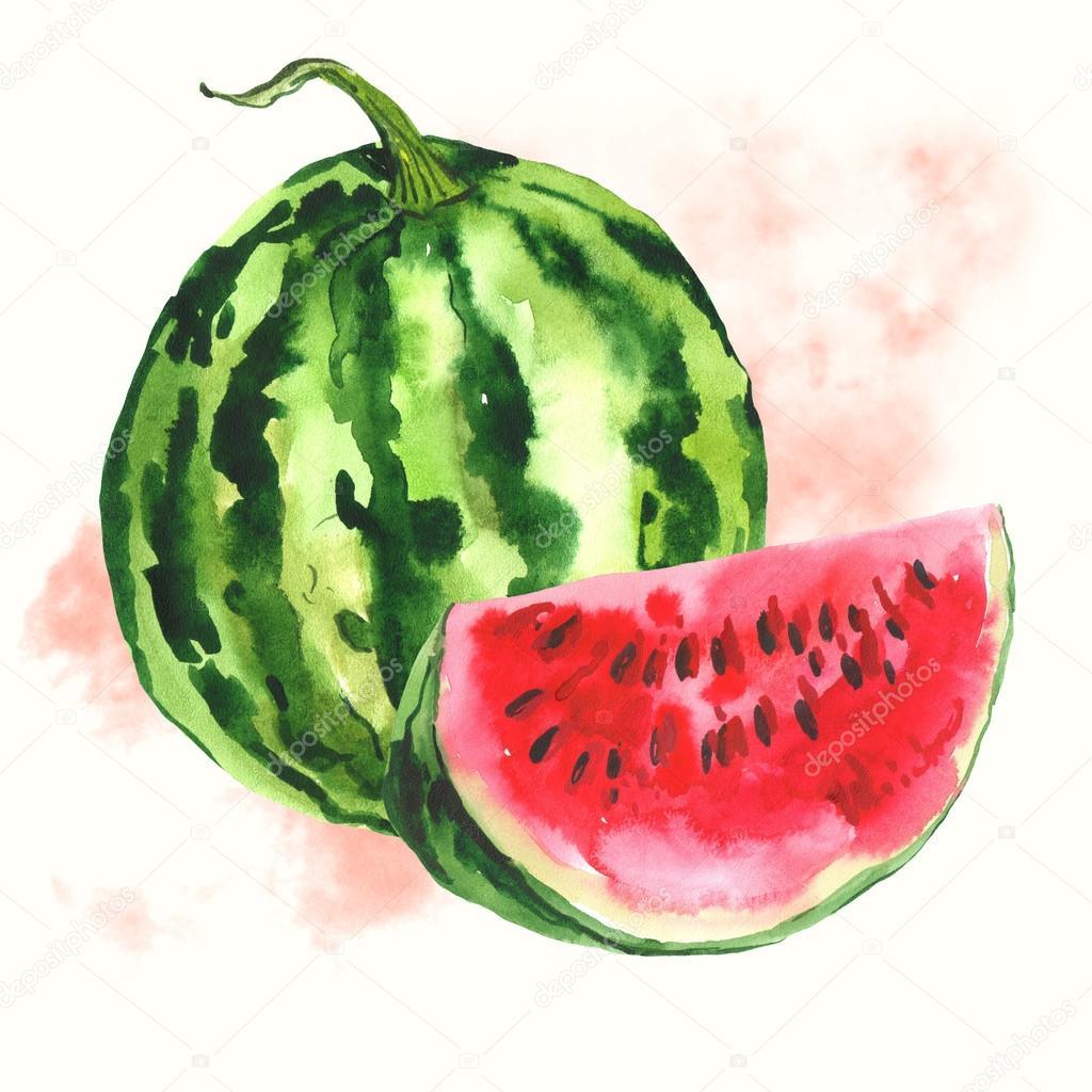 Рисунки арбуза гуашь