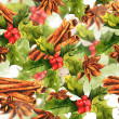Christmas Holly with cinnamon — Stock Photo