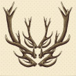 Hipster vintage background with deer antlers — Stock Vector #41652713