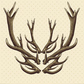 Hipster vintage background with deer antlers — Stock Vector