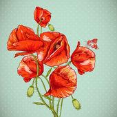 Montón de ilustración hermosa vector amapola roja — Vector de stock