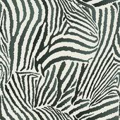 Бесшовный фон животное Зебра — Cтоковый вектор