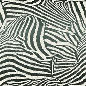 Animal Zebra Seamless Background — Stock Vector