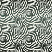 Animal Zebra Seamless Background — ストックベクタ