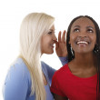 Portrait of friends - African-American and Caucasian — Stock Photo #26020703