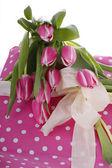 Tulipanes rosa con rosa paquete punteado — Foto de Stock