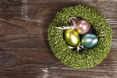 Easter eggs in easter nest — Stock Photo