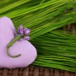 Lilac lavender scented heart on green grass — Stock Photo