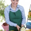 Senior woman repotting spring flowers — Stock Photo