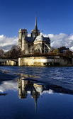 Notre Dame Paris, — Stock Photo